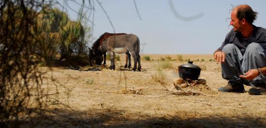 Pause dans le coin le plus vert du désert