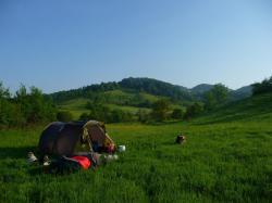 11/05/2011 Bosnie